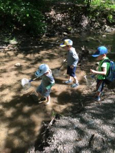 Campers explore the stream