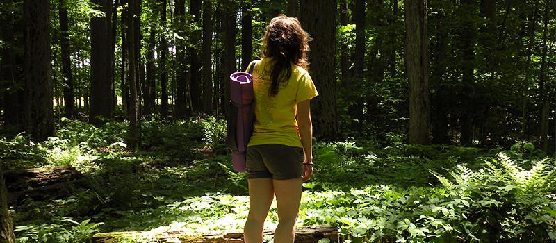 yoga and meditation walk