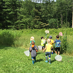 kids heading out with bug nets into field