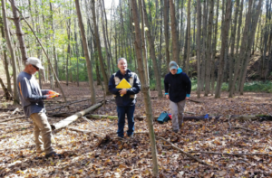Dr. Greg McGee and students have designed a study to look at forest wildflower restoration in the reforested, former agricultural area, off the Boundary Trail.