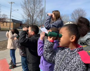 Second grade students identify birds as part of their Nature in the City lesson.