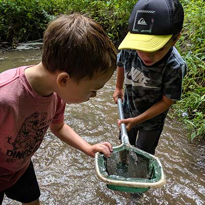 two boys catching creatures in stream