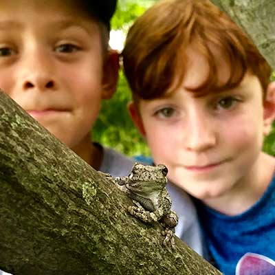 two-boys-discover-tree-frog