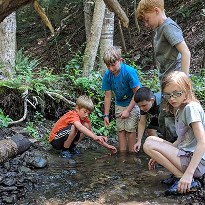 kids float stick boats in stream