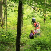 kids hiking through the woods in a line