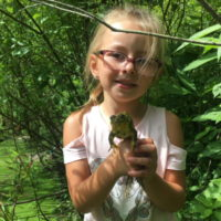 little girl holding frog from pond