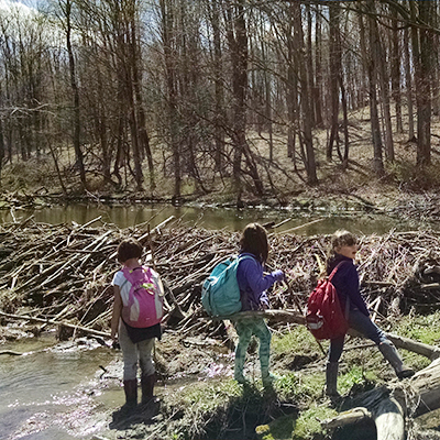 kids with backpacks long the stream edge in spring