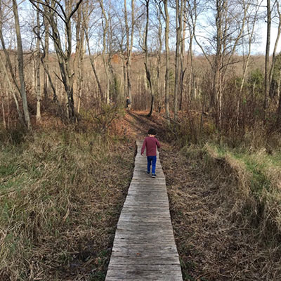 young boy walks alone on anature boardwalk taking in the sights