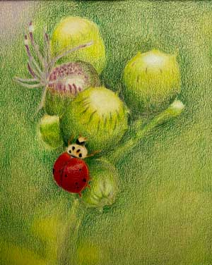 Artwork by a student of a ladybug on a plant