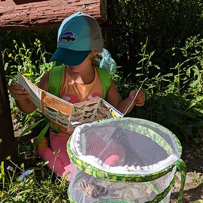 girl identifies bugs in a net cage